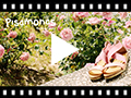 Video from Leather sandals with crossover elastic straps