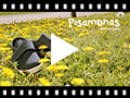 Video from Velcro Blucher Shoes Espadrille Sole